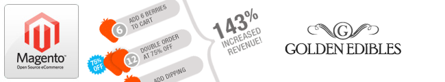 Increase your revenue with Magento Enterprise