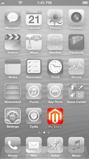 Example: Touch icon on iPhone