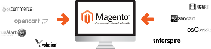 migration, magento data transfer, data transfer, magento development
